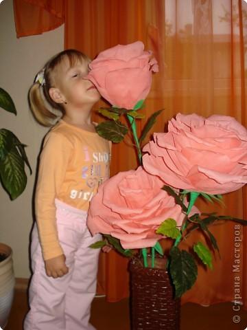 Большие розы из гофрированной бумаги своими руками пошаговая инструкция