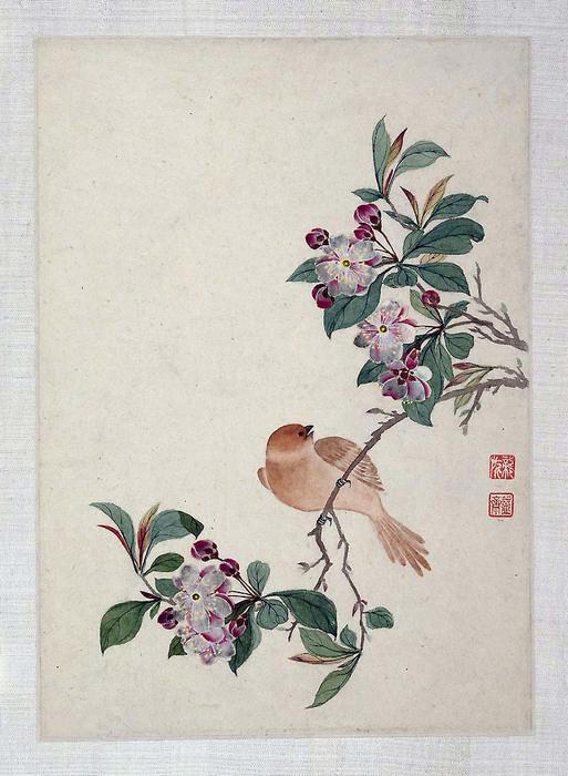 """Альбомчик 19 века""""Птицы,насекомые и цветы"""" китайского художника Yi Zhai."""