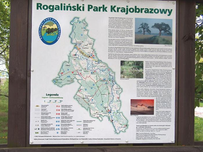 Дворец Рачиньских в селении Рогалин 64950