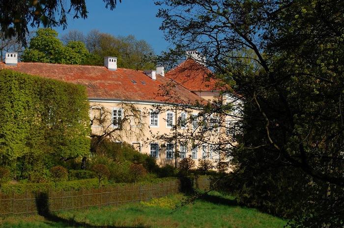 Дворец Рачиньских в селении Рогалин 11643