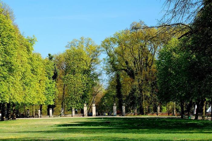 Дворец Рачиньских в селении Рогалин 93751