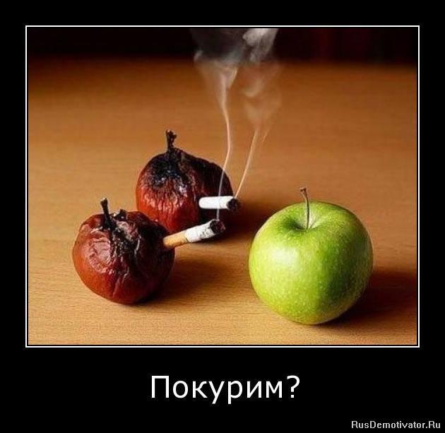 1291115451_bhk5a6dfymw0 (1) (630x613, 46Kb)