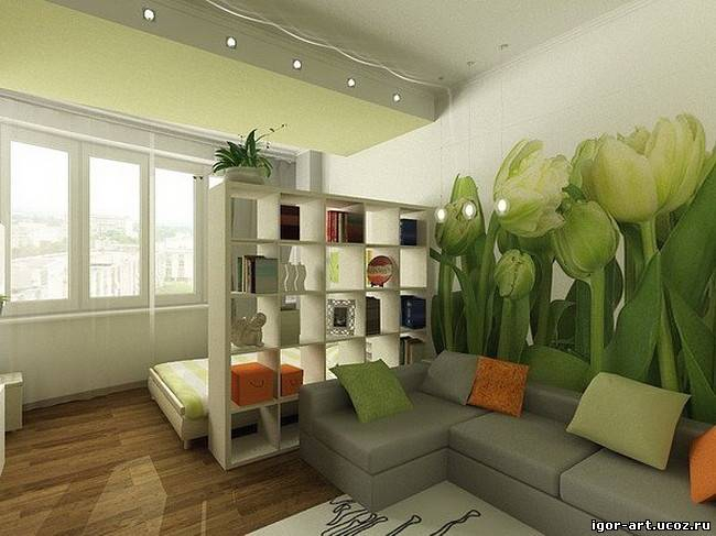 Идеи зонирования комнаты фото