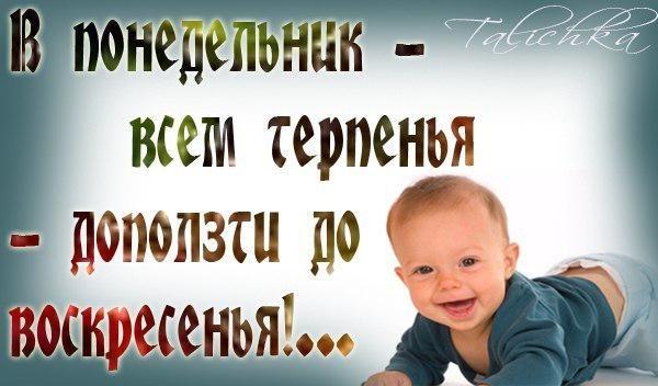 3768849_poned_j (600x352, 44Kb)