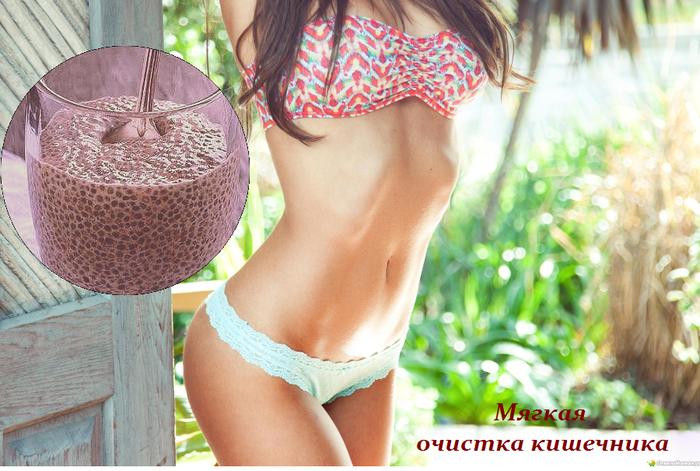 1434376041_Myagkaya_ochistka_kishechnika (700x471, 575Kb)