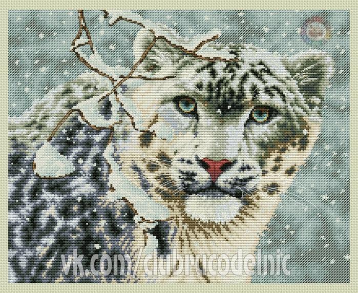 Snow Leopard (700x572, 434Kb)