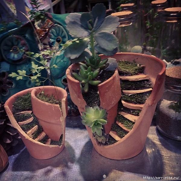 Миниатюрный сад из цветочного горшка. Идеи (1) (600x600, 237Kb)