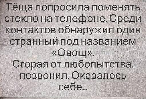 3416556_image_4_ (510x347, 67Kb)