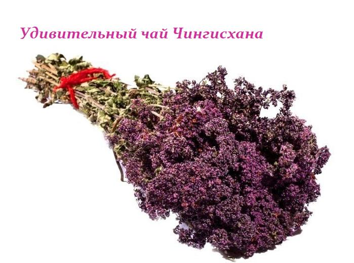 1434808733_Udivitel_nuyy_chay_CHingishana (699x520, 379Kb)