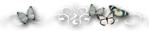 4975968_0_7f42d_e83ae3c9_M (300x64, 31Kb)