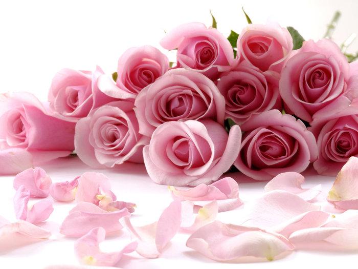 rose_104 (700x525, 74Kb)