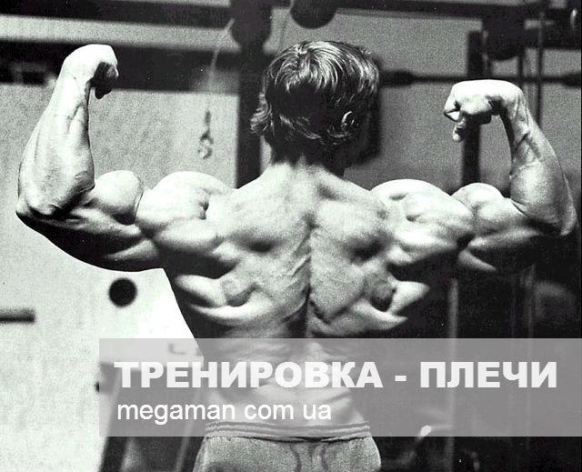 Как накачать плечи (упражнения тренировка) 2 (640x519, 71Kb)