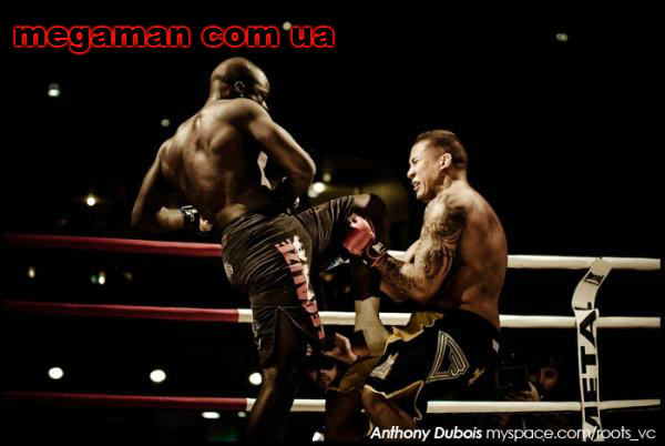 Спортивное питание и единоборства megaman com ua 1 (600x402, 50Kb)