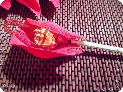 Роза с чупа чупсом3 (520x390, 173Kb)