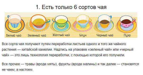 Вещи, которые вы не знали о том, как пить чай (604x316, 202Kb)