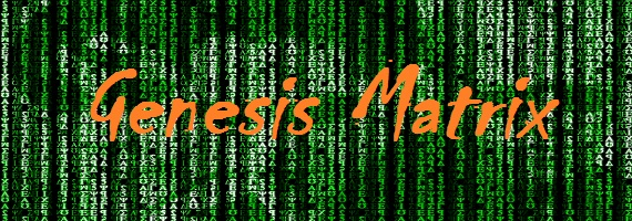 Genesis-Matrix (570x200, 296Kb)
