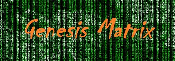 Genesis-Matrix (570x200, 296Kb)