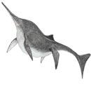 Шонизавр (130x130, 5Kb)