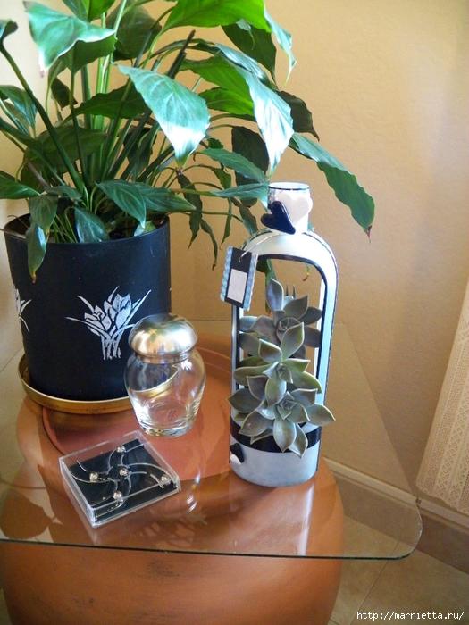 Кашпо-вазочка из пластиковой бутылки для суккулентов (1) (525x700, 302Kb)