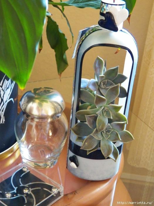 Кашпо-вазочка из пластиковой бутылки для суккулентов (2) (525x700, 288Kb)