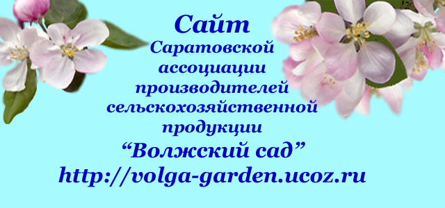 Волжский сад на Ucoz (640x300, 85Kb)