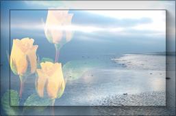 розы-и-море-п (257x170, 39Kb)