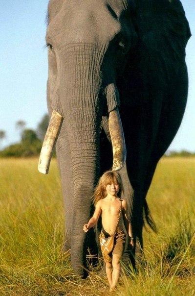 Девочка с африканскими животными5 (399x604, 219Kb)