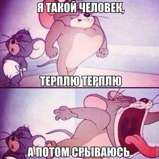 smeshnie_kartinki_143550326861 (533x533, 312Kb)