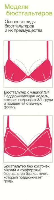 byustiki_28176242960 (190x700, 94Kb)