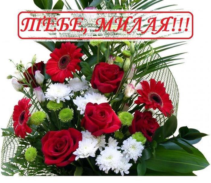 цветы моей подруге картинки