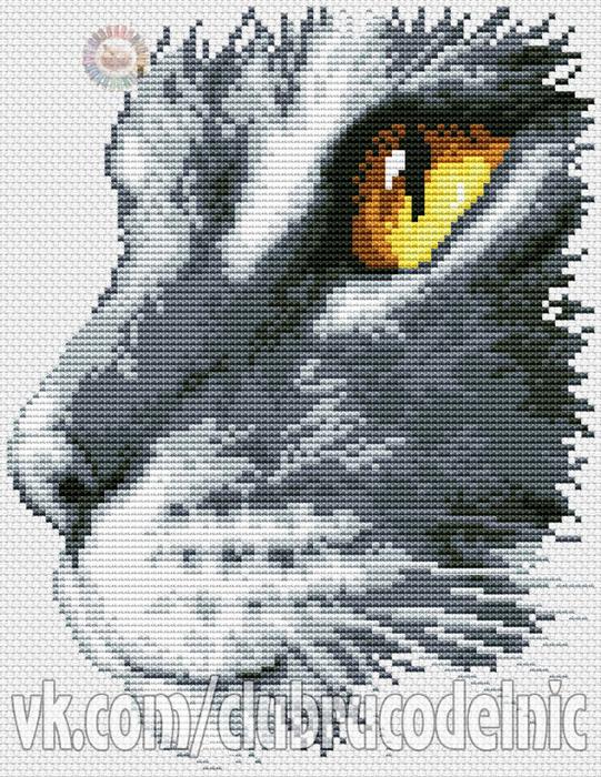 Cat portrait (541x700, 476Kb)