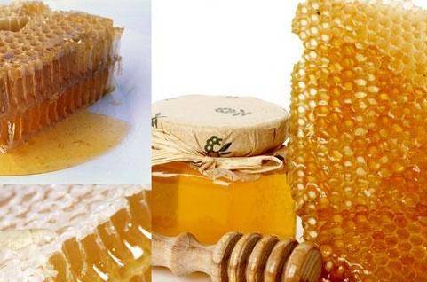 мёд (481x318, 151Kb)