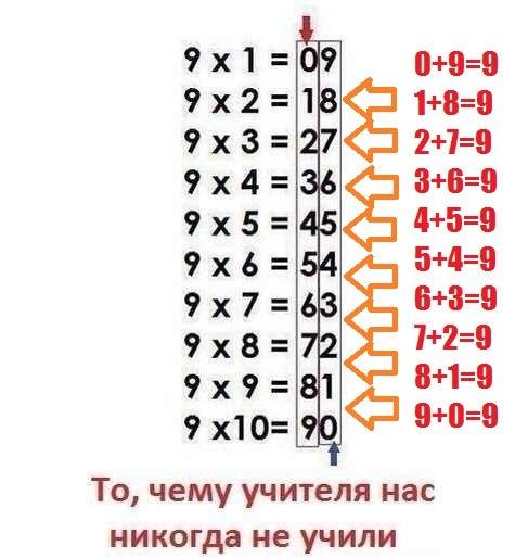 4208855_4N9wNTOX1H0 (487x515, 45Kb)