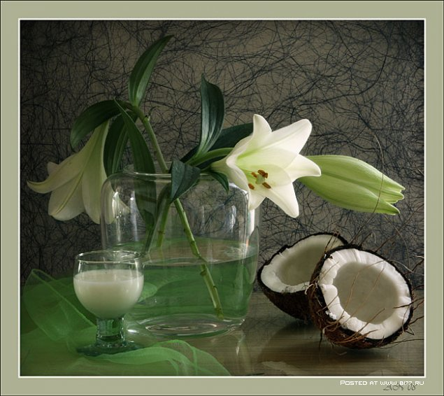 1243885289_photo-still-life-photographer-anna-nemaya-63 (635x566, 77Kb)
