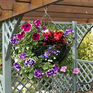 4430707_1347311076_hangingbaskets (300x300, 23Kb)