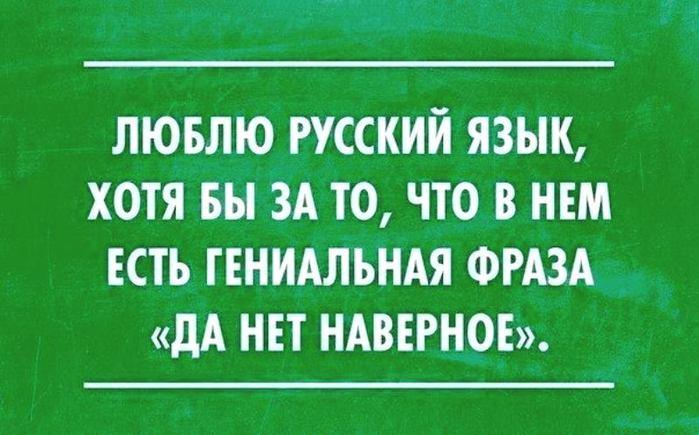 Люблю русский язык (700x435, 52Kb)