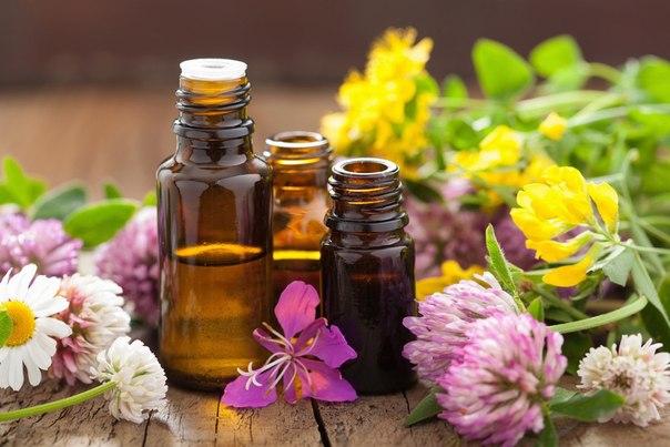 Эфирные масла от старения кожи лица (604x403, 58Kb)