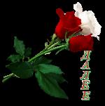 4565946_115615621_766 (150x151, 24Kb)