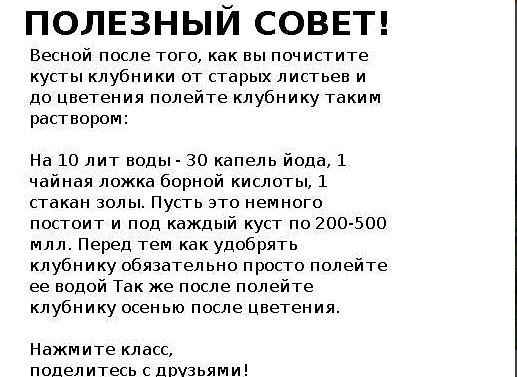 Безымянный 4 (517x377, 77Kb)