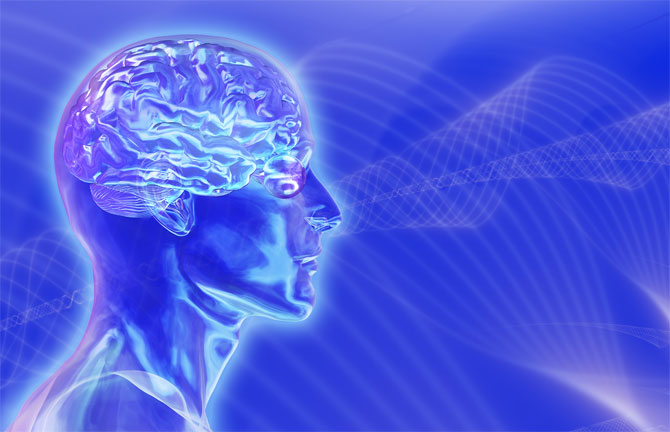 мозгище (370x232, 53Kb)