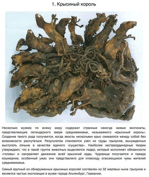 6 артефактов, хранящих тайны веков (507x604, 335Kb)