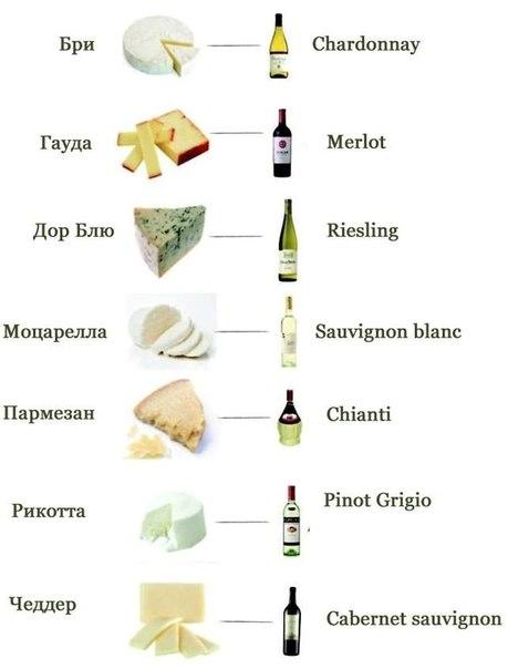 Сыр и вино - что с чем сочетается (459x604, 29Kb)