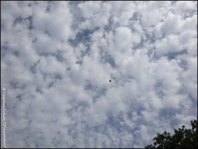 Июньское небо над городом Зигеном