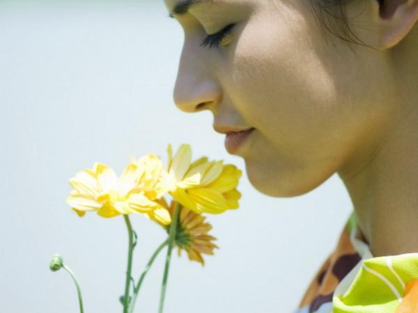 цветок (600x450, 153Kb)