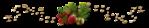 Превью 0_11c900_265cd566_orig (700x131, 83Kb)