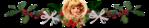 Превью 0_11c934_c75a63bb_orig (700x131, 129Kb)
