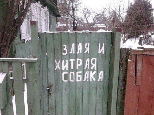 1918486_original_2 (640x480, 77Kb)