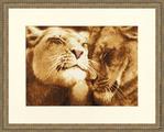 Превью ДЖ-028 Влюбленные львы (700x562, 510Kb)