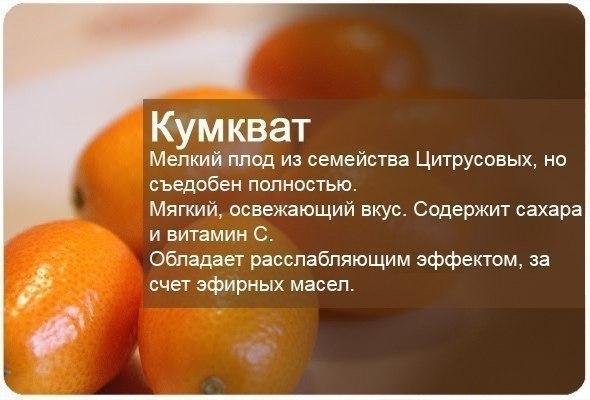 Полезные свойства фруктов7 (590x400, 182Kb)