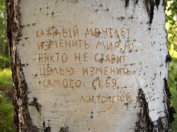 Памятка для псевдопатриотов/1415502_Kajdii_mechtaet_izmenit_mir (700x525, 168Kb)